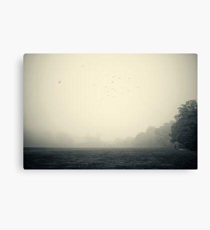 Misty morning 2 Canvas Print