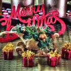Merry Christmas by Noble Upchurch