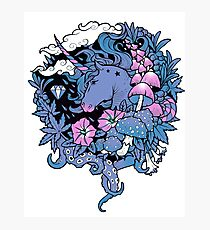 - Magical Unicorn - Photographic Print