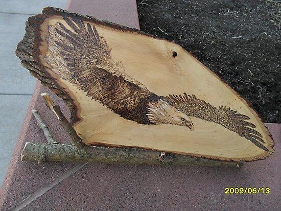 Bald Eagle in Torpedo Mode by lynnieB