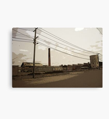 function over form Canvas Print