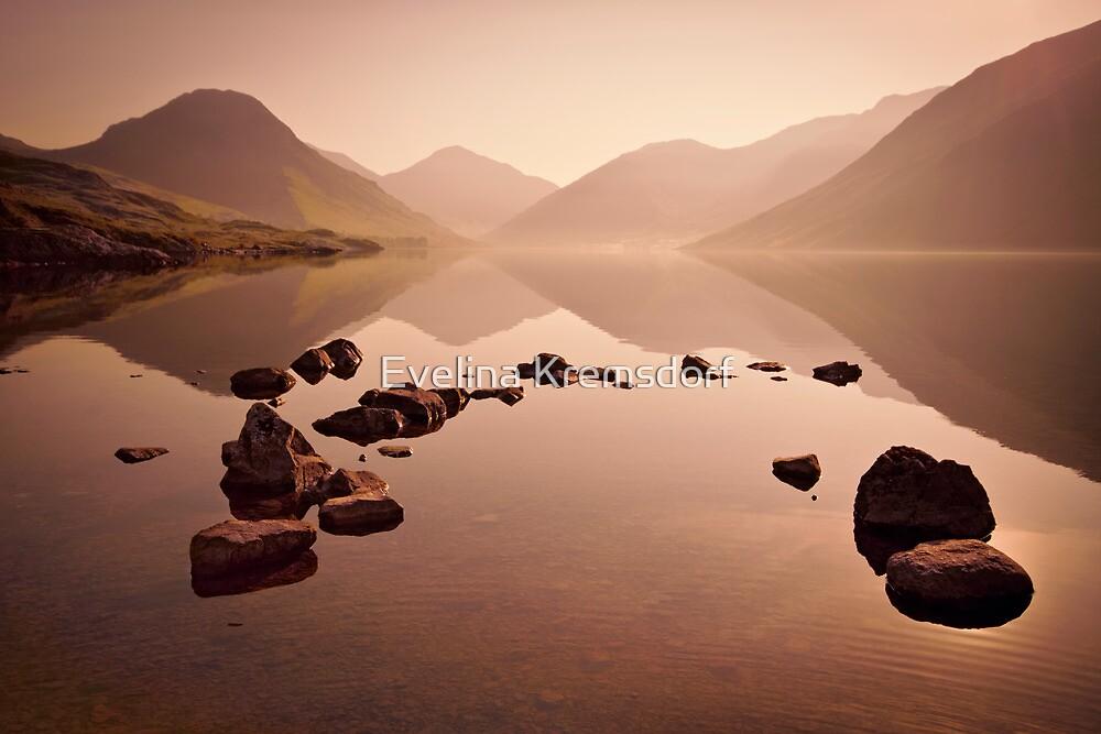 Wetlands Morning by Evelina Kremsdorf