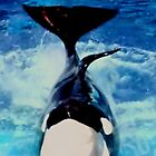 Proud Orca Daddy Posing for Photos by Princess1222
