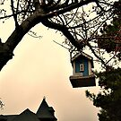 A Birdhouse Tree by Jane Neill-Hancock