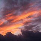 December Sky by Steve Outram