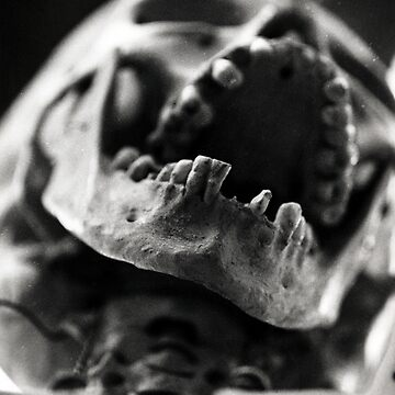 I Want Your Skulls by charlesbodi