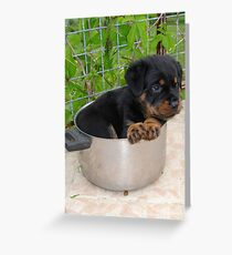 Puppy Rottweiler Curled Up In Food Bowl Greeting Card