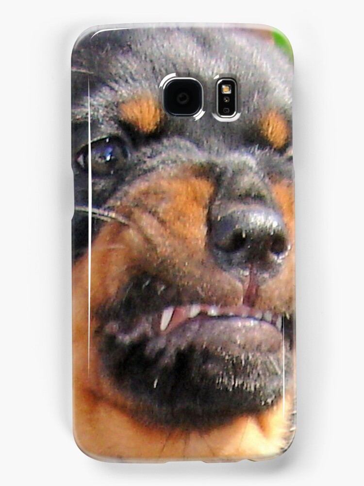 Funny Grumpy Faced Rottweiler Puppy  by taiche