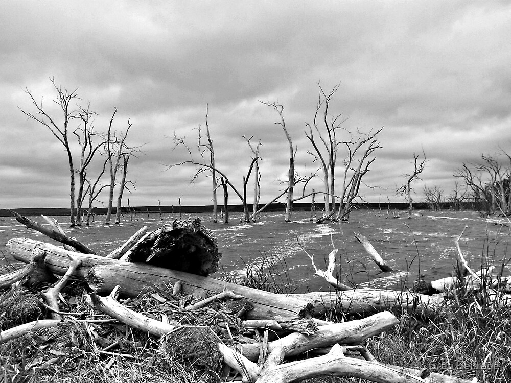 Gloomy Waters by Greg Belfrage