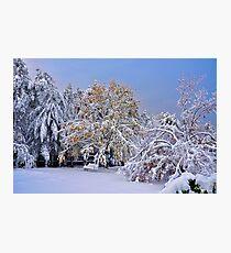 When Seasons Collide Photographic Print