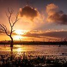 Wetland Sunset by Ryan Carter