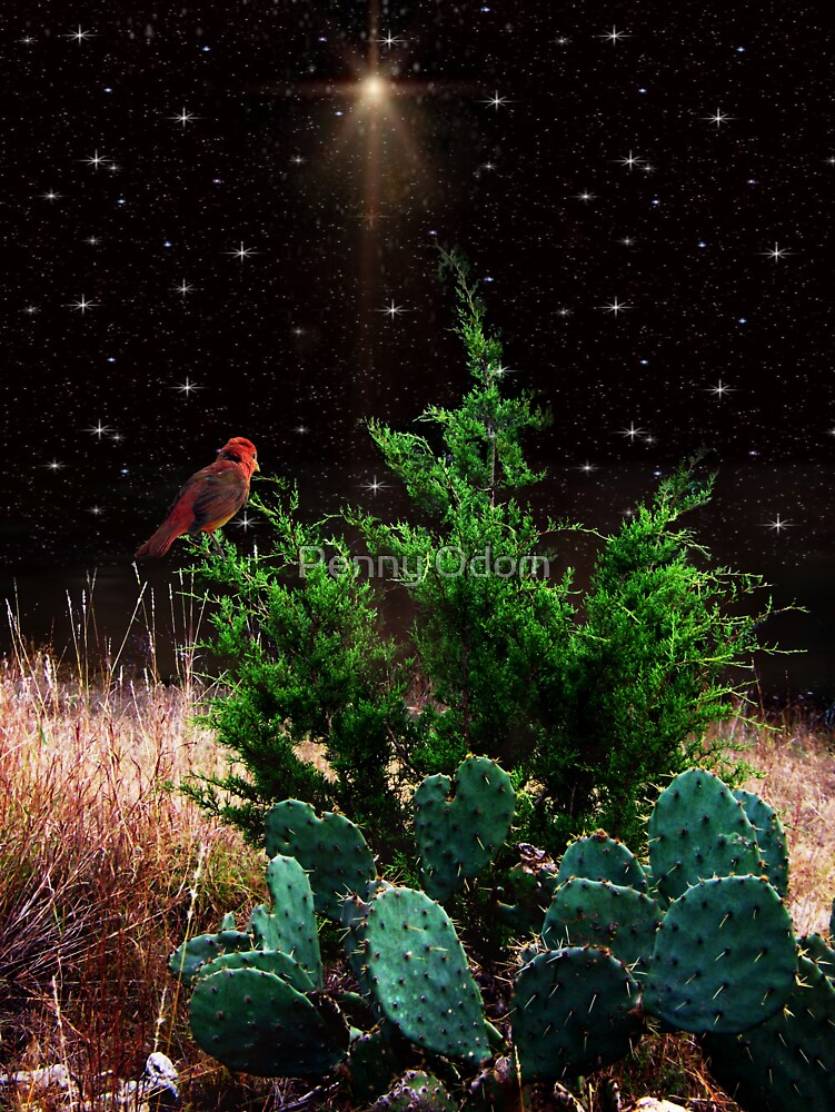 A Silent Night by Penny Odom