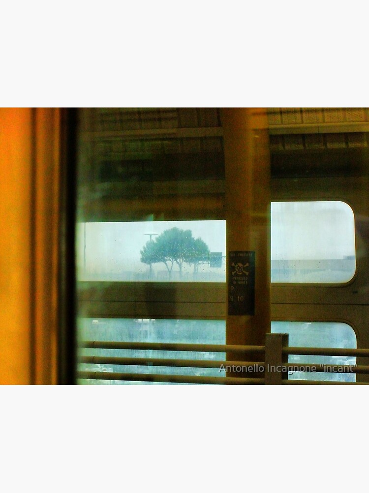 In train, tree in rain by incant