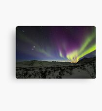 Yukon Northern Lights 3 Canvas Print