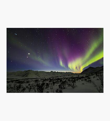 Yukon Northern Lights 3 Photographic Print