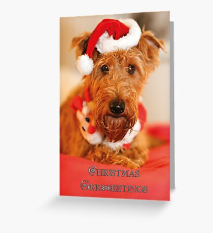 Christmas Grreetings Greeting Card