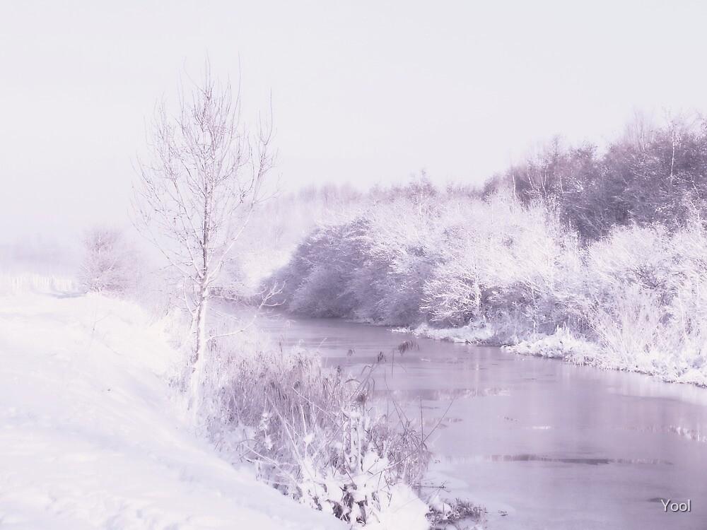 Winter in lavender... by Yool