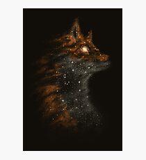 StarFox Photographic Print