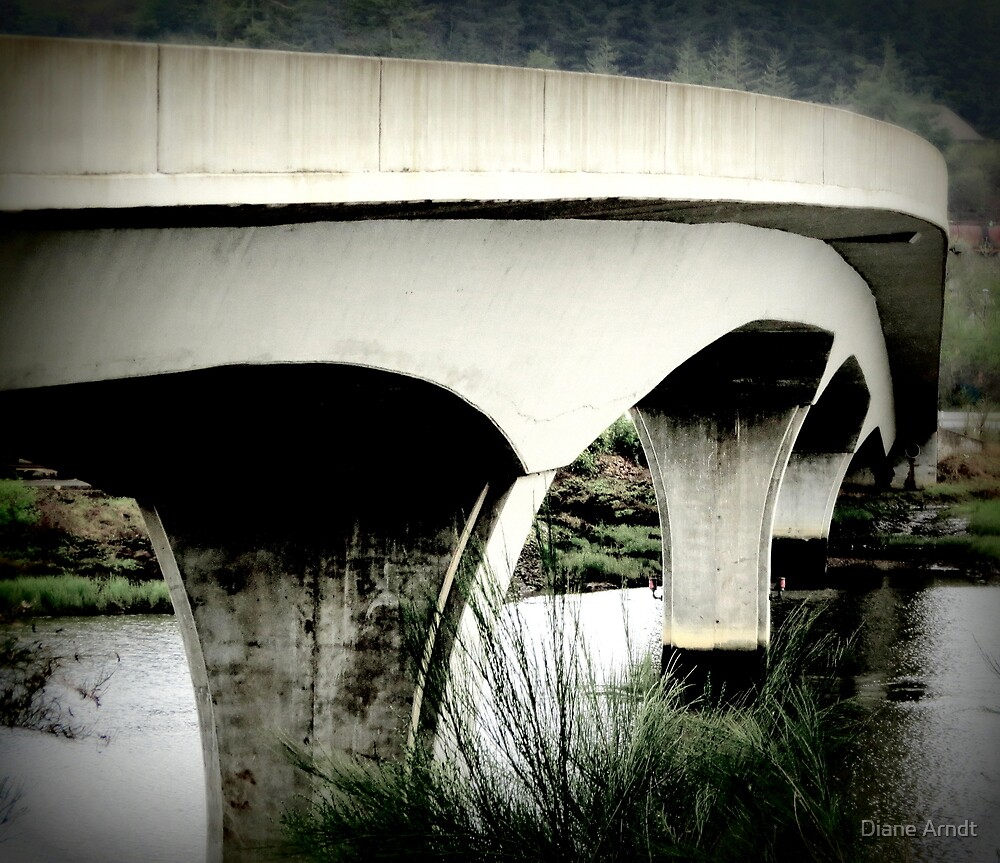Slow Down, Curves Ahead...Between Coos Bay and Coquille, Oregon by Diane Arndt