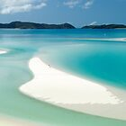 Marooned on Whitsunday Island by Barbara Burkhardt