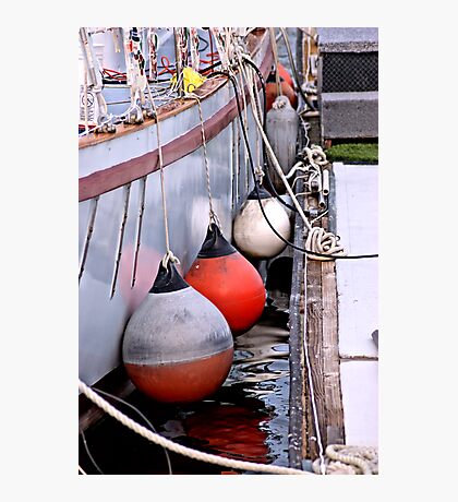 Bumpers n Ropes Photographic Print