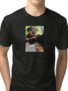 Grumpy Faced Rottweiler Puppy Lashes Out Tri-blend T-Shirt