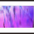 Purple Rain out the Window by MacroXscape