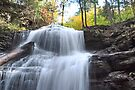 Top Of Shawnee Falls  by Gene Walls