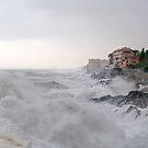 storm in Nervi  by oreundici