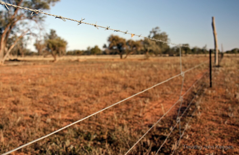 Outback fence by Timothy John Keegan
