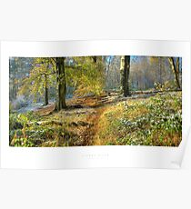 Lickey Hills, Worcestershire Poster