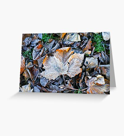 Bed of leaves Greeting Card