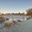 Winter Sunrise by Kasia Nowak