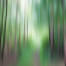 Forest no1 by LAURANCE RICHARDSON