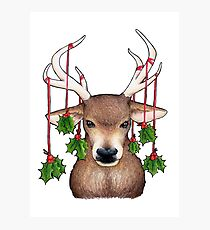 Stag with Holly Photographic Print