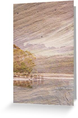 Jetty on Sandstone by Michelle Ricketts