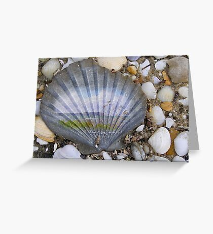 Table Cape on a shell Greeting Card