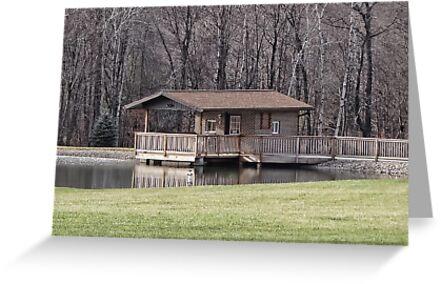 Backyard Pond by vigor
