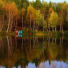 Fall Glory  by osprey-Ian