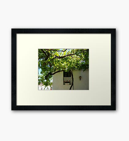Under The Vines Framed Print