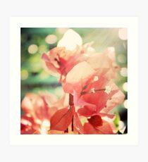 Coral Glow Bokeh Bougainvillea Botanical Photograph Art Print