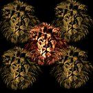 The lion  by parko