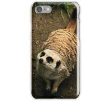 Meerkat On Alert iPhone Case/Skin