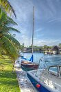 A Dreamy Backyard in Nassau, The Bahamas by Jeremy Lavender Photography