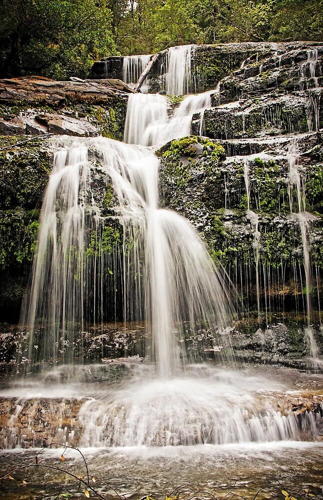 Liffey Falls - Tasmania by TonyCrehan