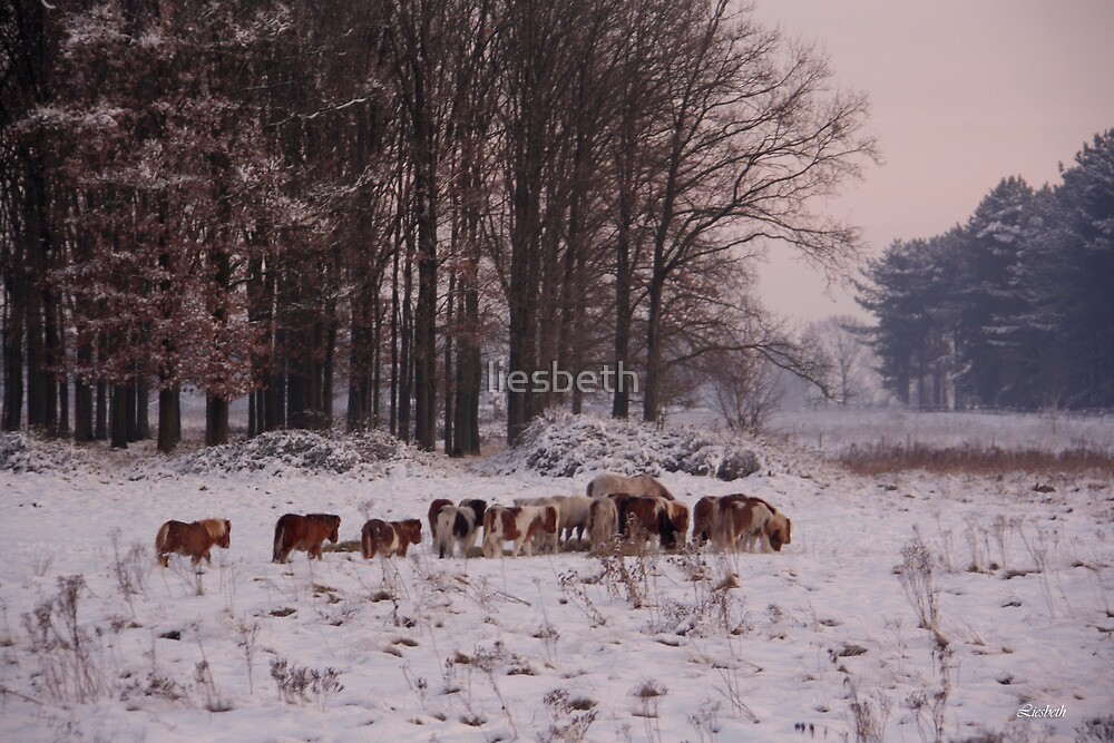 Wintergathering by liesbeth