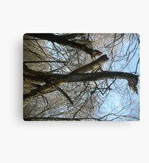 Support Canvas Print