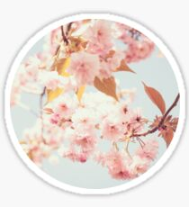 Cherry dream Sticker