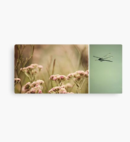 Nature ~ dragonfly Canvas Print