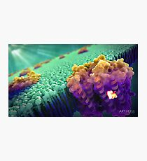 Bacteriorhodopsin Protein Photographic Print